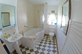 big bathroom with bath and overhead shower